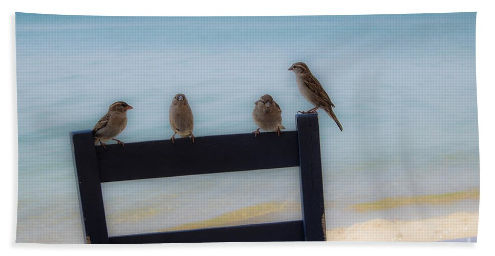 2015 Bath Sheet featuring the photograph Birds On A Chair by Brothers Beerens