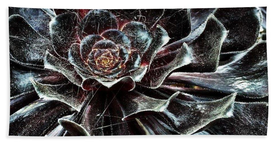 Black Bath Sheet featuring the digital art Black Aeonium by Mo Barton