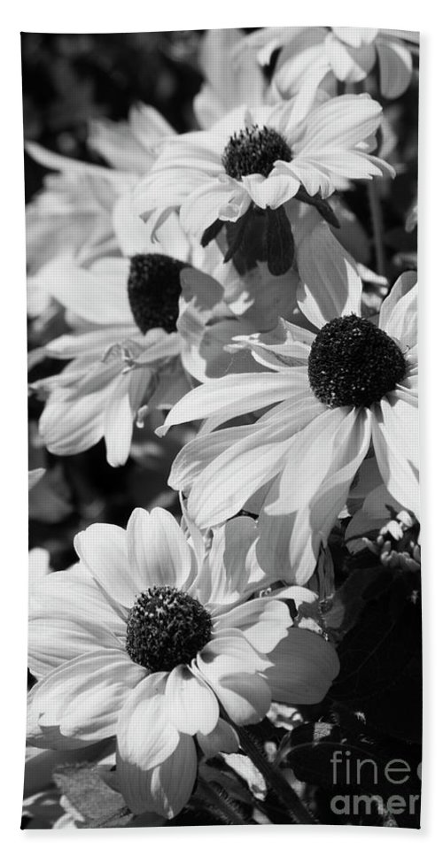 Black And White Bath Sheet featuring the photograph Black And White Coneflowers by Jim And Emily Bush