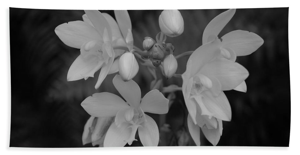 Macro Bath Towel featuring the photograph Black And White Flower by Rob Hans