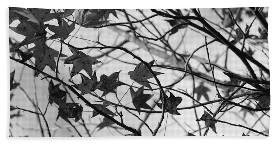 Leaves Hand Towel featuring the photograph Black And White Leaves by Carol Groenen