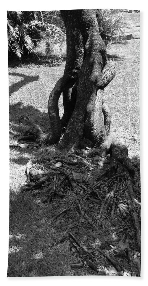 Black And White Bath Towel featuring the photograph Black And White Roots by Rob Hans