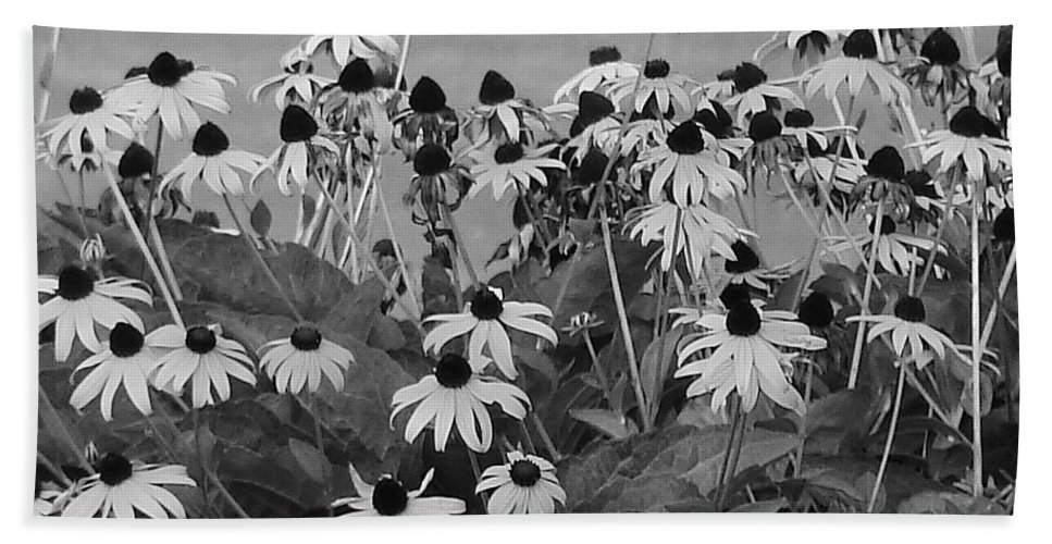 Hand Towel featuring the photograph Black And White Susans by Luciana Seymour