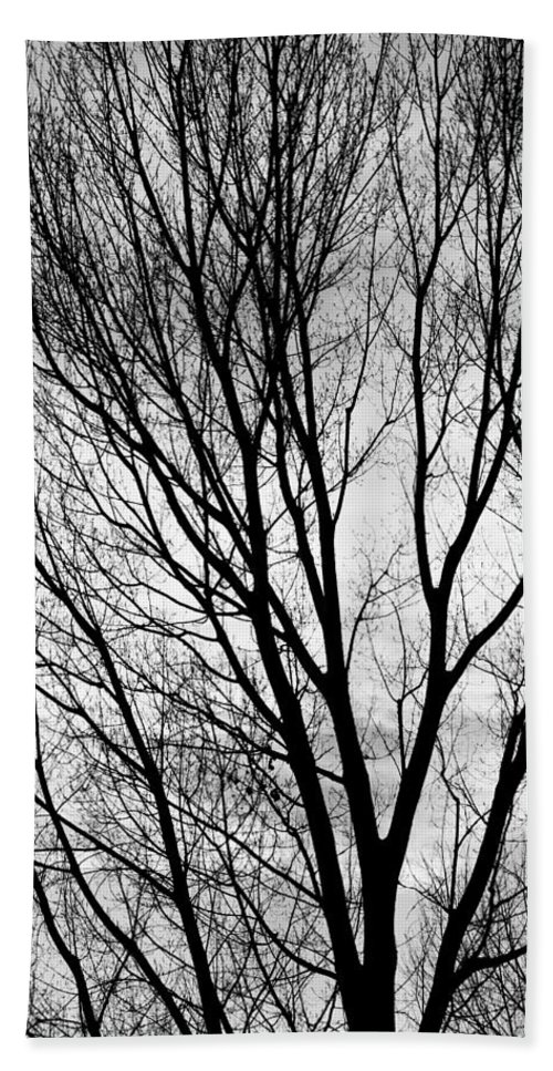 Silhouette Hand Towel featuring the photograph Black And White Tree Branches Silhouette by James BO Insogna