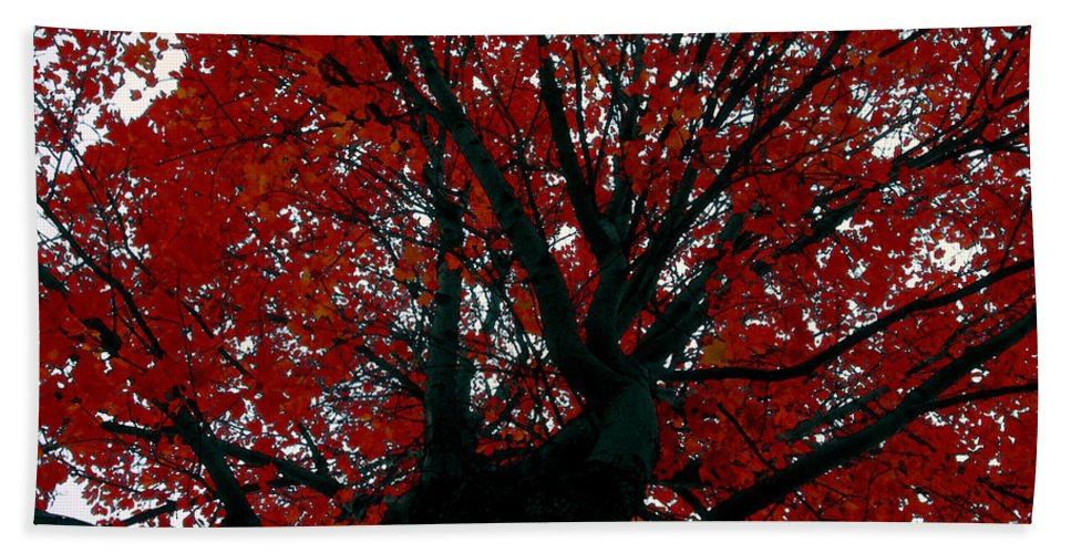 Red Tree Bath Sheet featuring the painting Black Bark Red Tree by David Lee Thompson