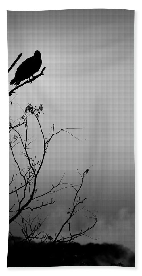 Black Bath Towel featuring the photograph Black Buzzard 7 by Teresa Mucha