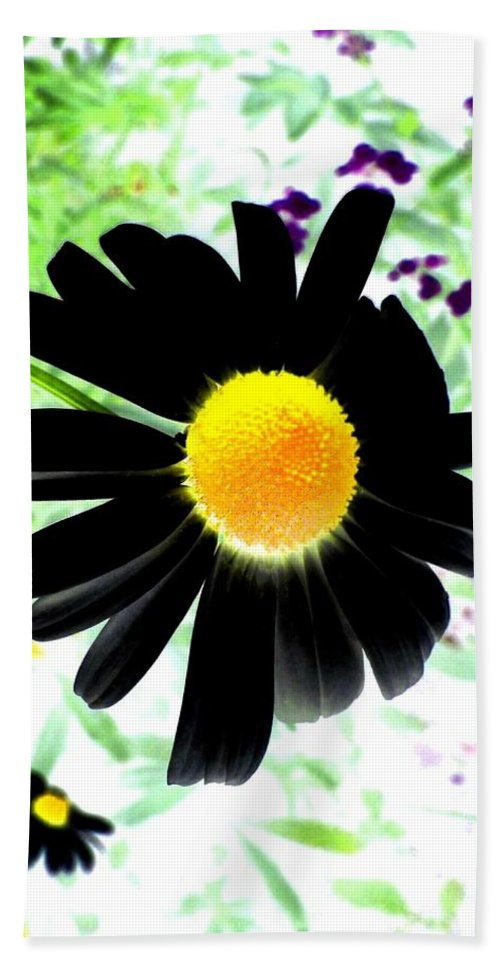 Photo Design Bath Sheet featuring the photograph Black Daisy by Will Borden