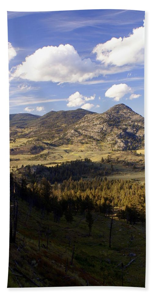 Yellowstone National Park Hand Towel featuring the photograph Blacktail Road Landscape by Marty Koch