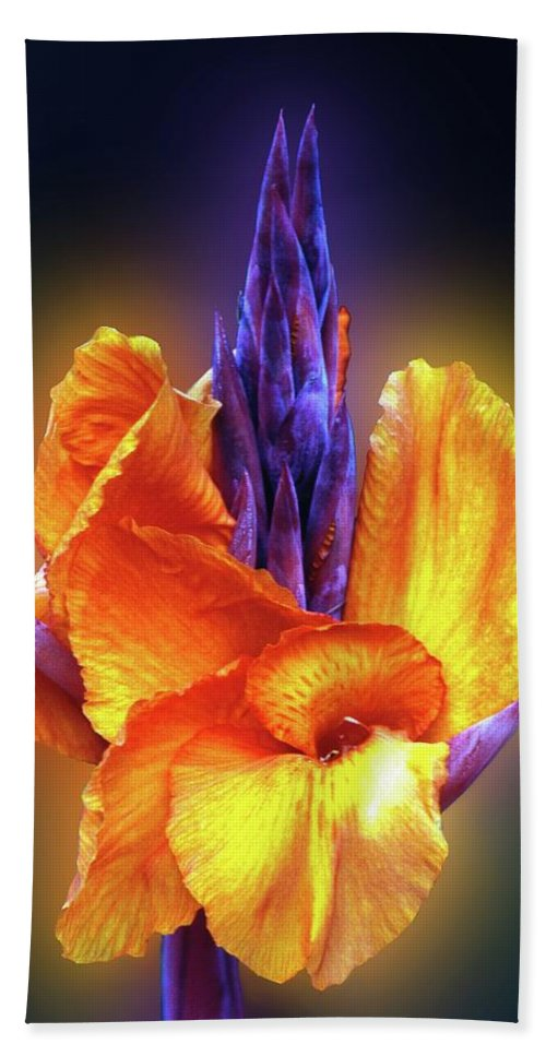 Garden Hand Towel featuring the photograph Blazing. by George and Sally Stevenson