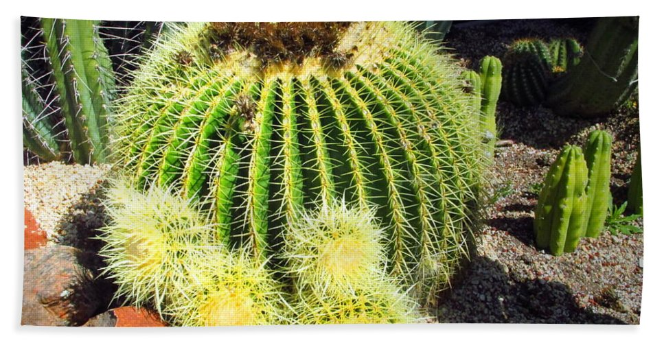 Cactus Hand Towel featuring the photograph Blooming Cactus Two by Joyce Dickens