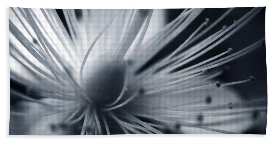 Art Bath Towel featuring the photograph Blossom by Dorit Fuhg