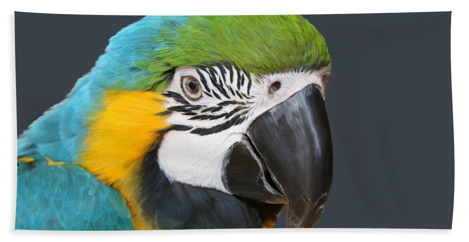 Birds Hand Towel featuring the painting Blue And Gold Macaw Digital Freehand Painting by Ernie Echols