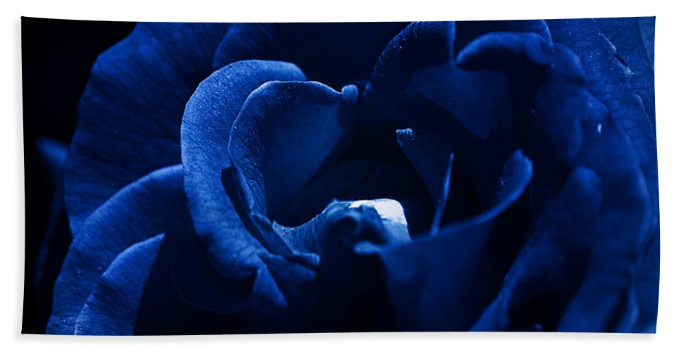 Clay Hand Towel featuring the photograph Blue Blue Rose by Clayton Bruster