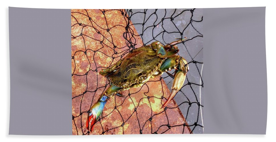 Ocean Bath Sheet featuring the photograph Blue Crab by George Noleff