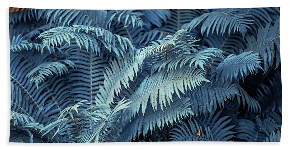 Jenny Rainbow Fine Art Photography Hand Towel featuring the photograph Blue Fern Leaves Abstract. Nature In Alien Skin by Jenny Rainbow