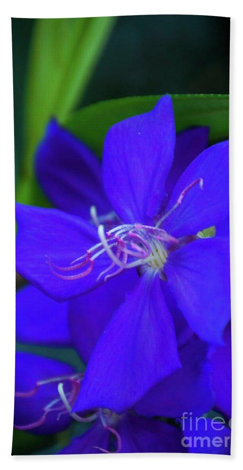 Flower Bath Sheet featuring the photograph Blue Flower by Pamela Williams
