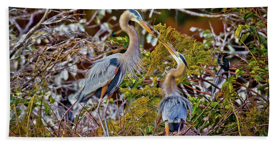 Blue Herons Hand Towel featuring the photograph Blue Herons by Dennis Goodman