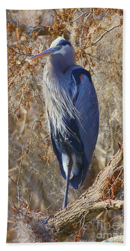 Blue Heron Hand Towel featuring the photograph Blue In The Moss by Deborah Benoit
