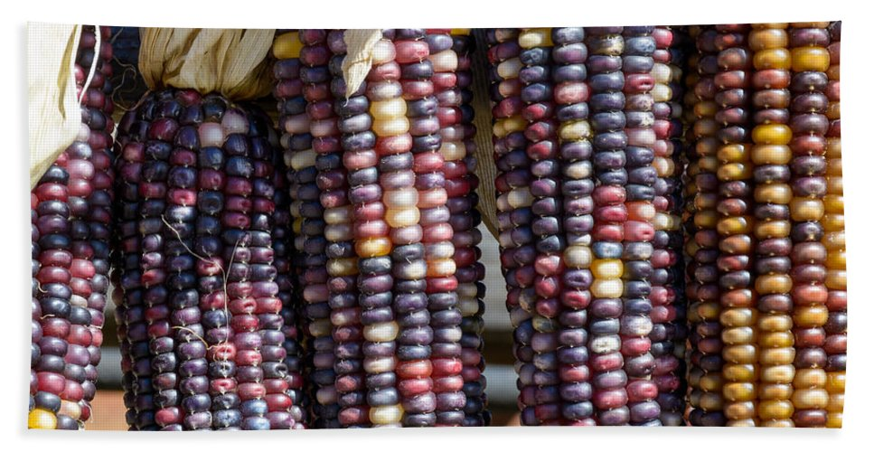 Art Bath Sheet featuring the photograph Blue Indian Corn by Barry Cruver
