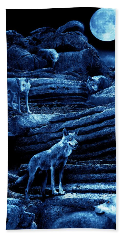 Wolf Hand Towel featuring the photograph Blue Moon Wolf Pack by Mal Bray