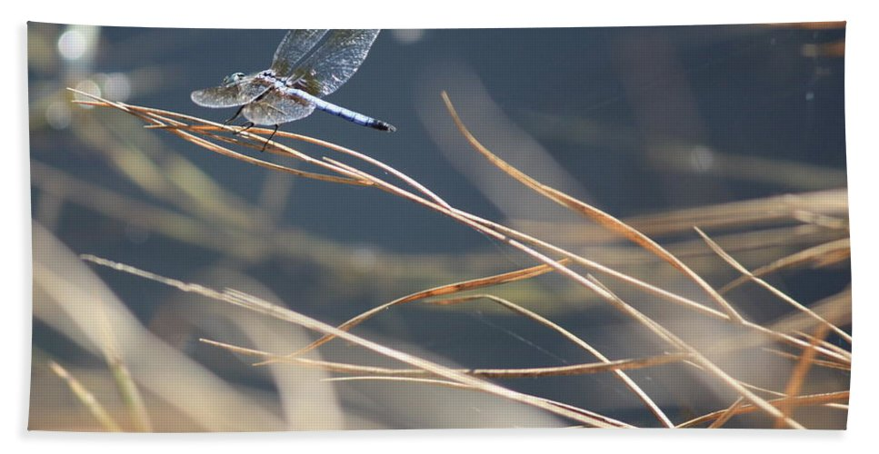Blue Hand Towel featuring the photograph Blue Pond by Carol Groenen