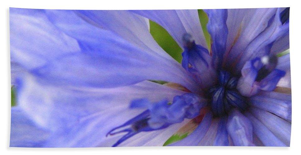 Flower Hand Towel featuring the photograph Blue Princess by Rhonda Barrett
