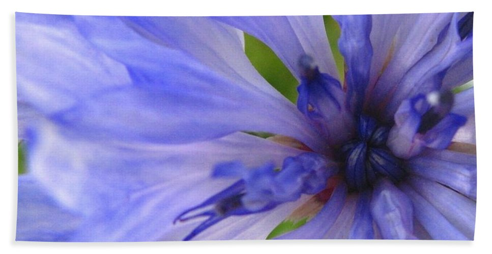 Flower Bath Towel featuring the photograph Blue Princess by Rhonda Barrett