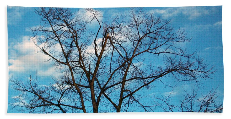 Tree Hand Towel featuring the photograph Blue Sky by Munir Alawi