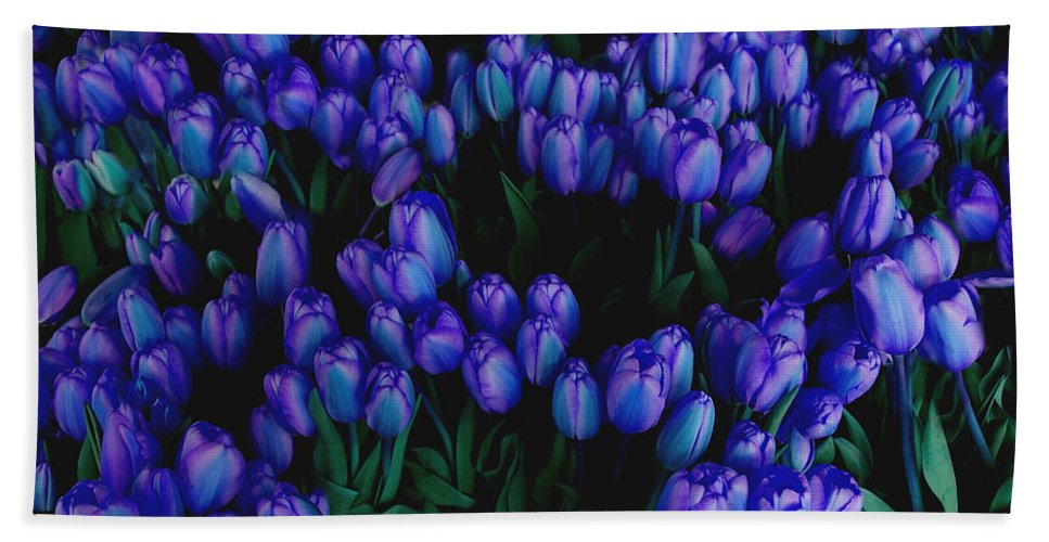 Blue Hand Towel featuring the photograph Blue Tulips by Tom Reynen