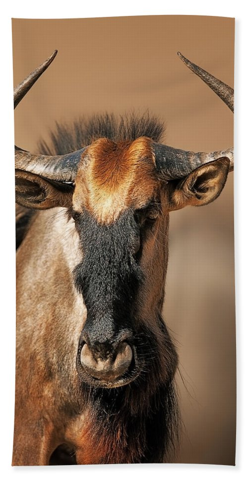 Wildebeest Bath Towel featuring the photograph Blue Wildebeest Portrait by Johan Swanepoel