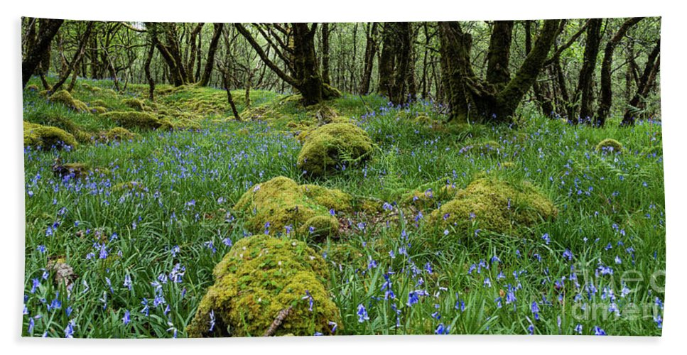 Flowers Hand Towel featuring the photograph Bluebell Woods by Francesca Winspeare