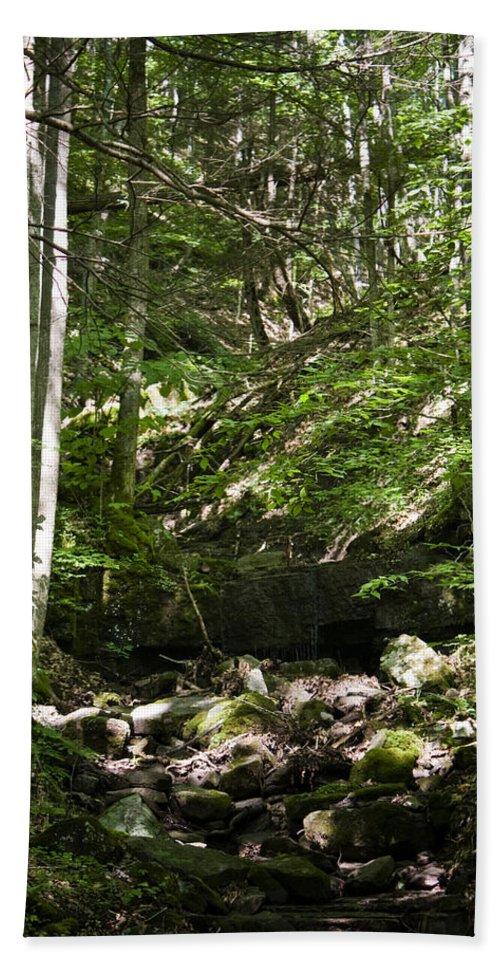 Bluestone Bath Sheet featuring the photograph Bluestone State Park Mountain Stream West Virginia by Teresa Mucha