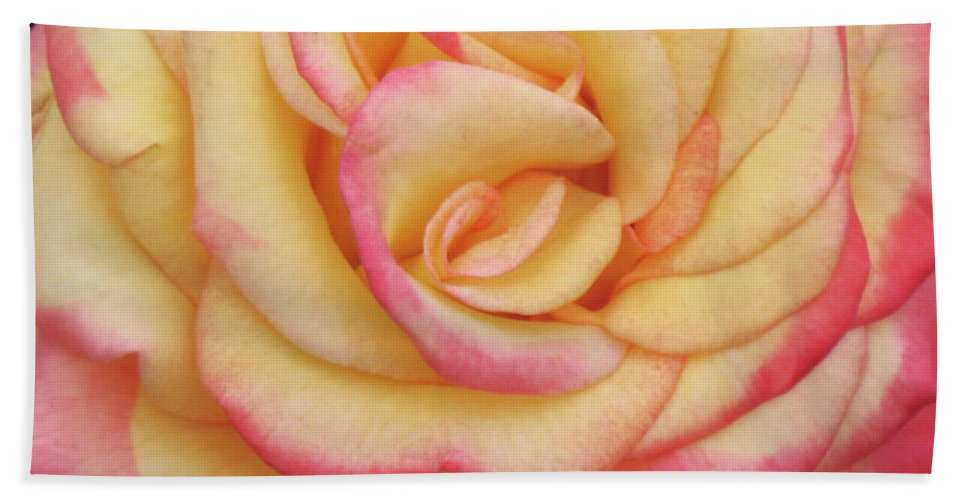 Close-up Photo Photography Flower Plant Blushing Yellow Rose Hand Towel featuring the photograph Blushing Yellow Rose by Christina Geiger