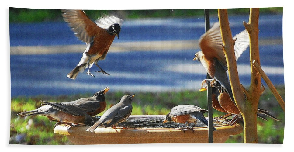 Robins Hand Towel featuring the digital art Bobbin Robins by DigiArt Diaries by Vicky B Fuller