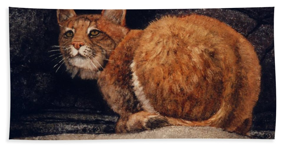 Wildlife Bath Towel featuring the painting Bobcat On Ledge by Frank Wilson