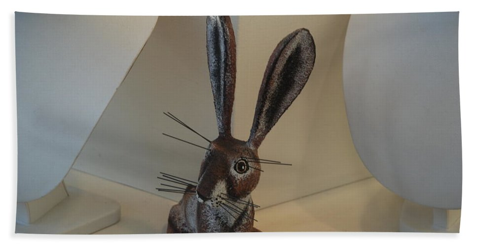 Rabbit Hand Towel featuring the photograph Boink Rabbit by Rob Hans