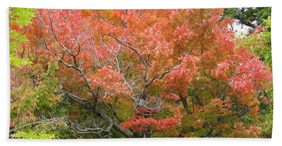 Fall Hand Towel featuring the photograph Bonfire by Kelly Mezzapelle