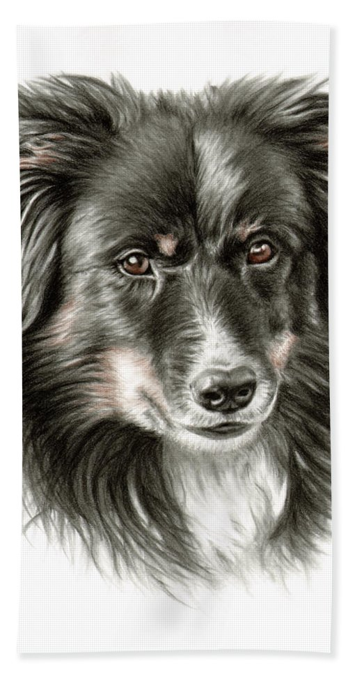 Dog Hand Towel featuring the drawing Border Collie Portrait by Nicole Zeug