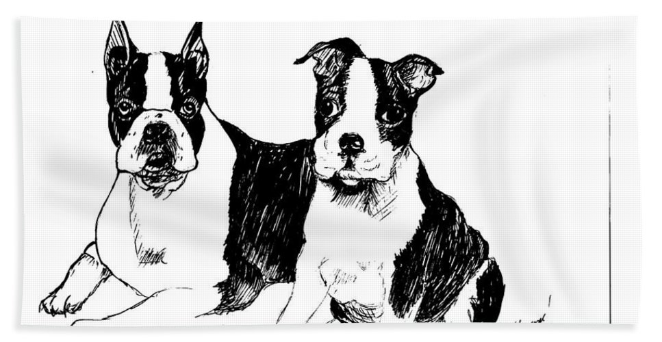 Dog Bath Sheet featuring the drawing Boston Terriers by Charme Curtin