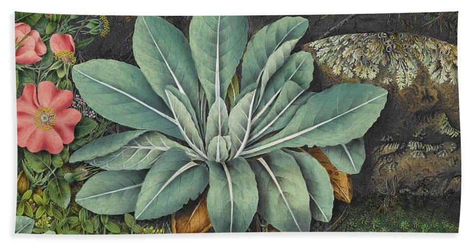 Abigail Lyman Hand Towel featuring the painting Botanical by Abigail Lyman