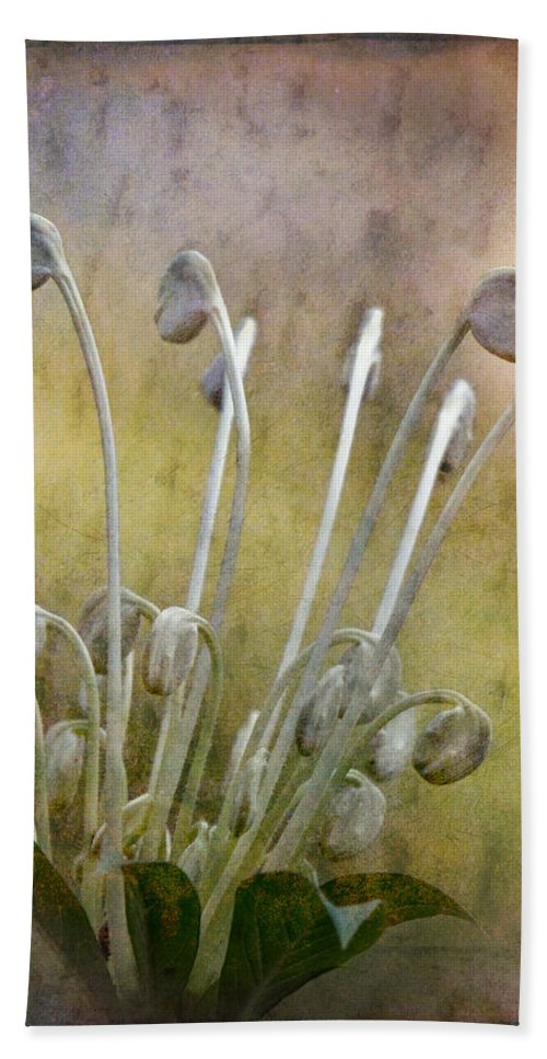 Flower Hand Towel featuring the photograph Botanical Specimen by Chris Lord