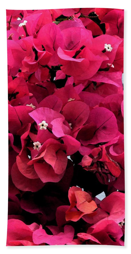 Flower Bath Sheet featuring the photograph Bougainvillia by Ian MacDonald