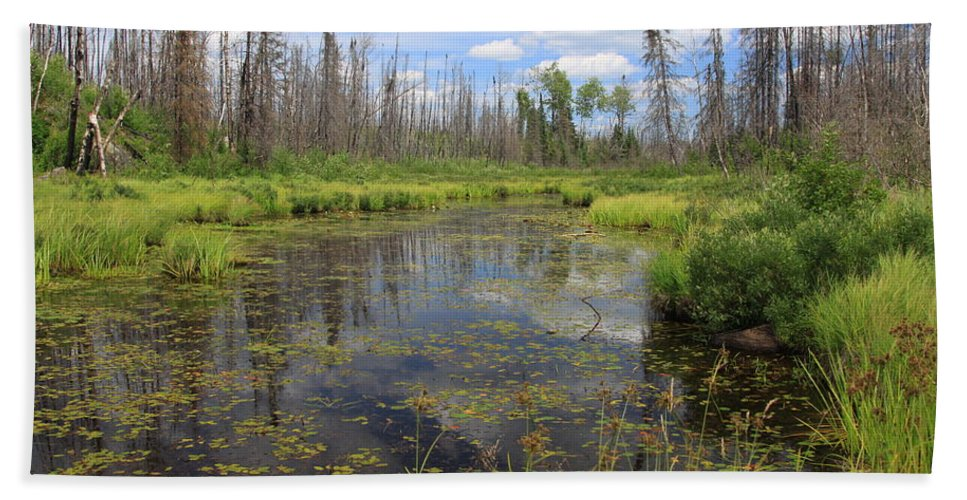 Boundary Waters Minnesota Lake Pond Swamp Nature Forest Park Lake Superior National Forest Bath Sheet featuring the photograph Boundary Waters Beauty by Shari Jardina