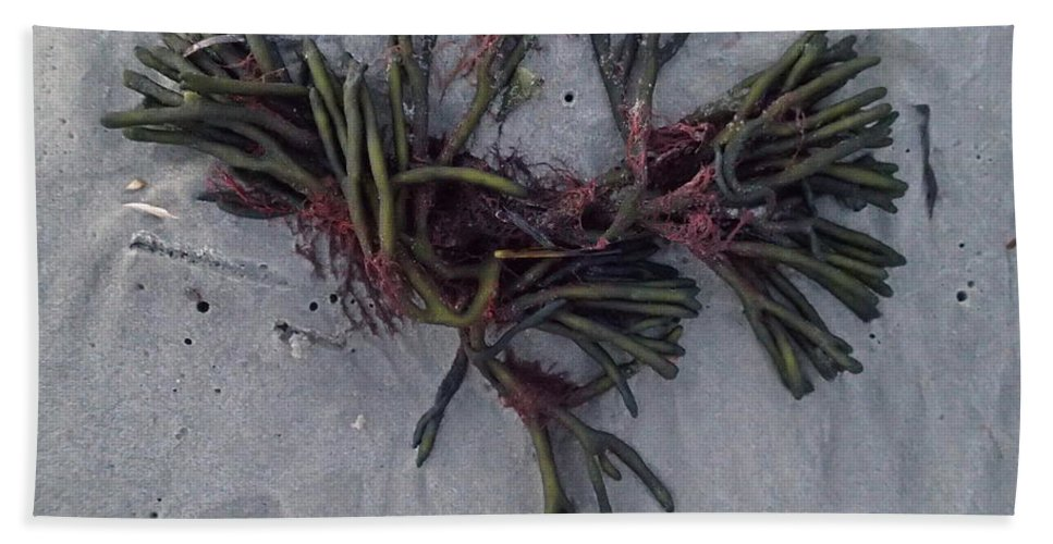 Seaweed Bath Sheet featuring the photograph Bouquet by Robert Nickologianis