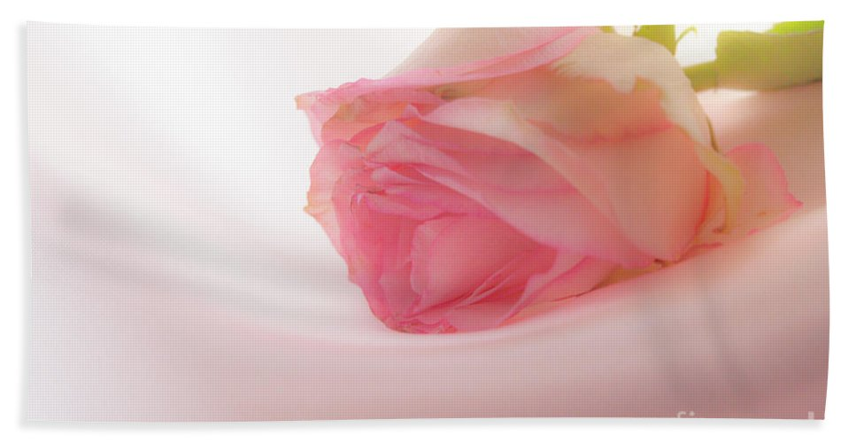 Soft Rose Hand Towel featuring the photograph Boutique Roses by Irina Effa