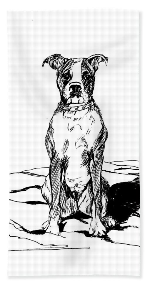 Dog Bath Sheet featuring the photograph Boxer In The Dirt by Charme Curtin