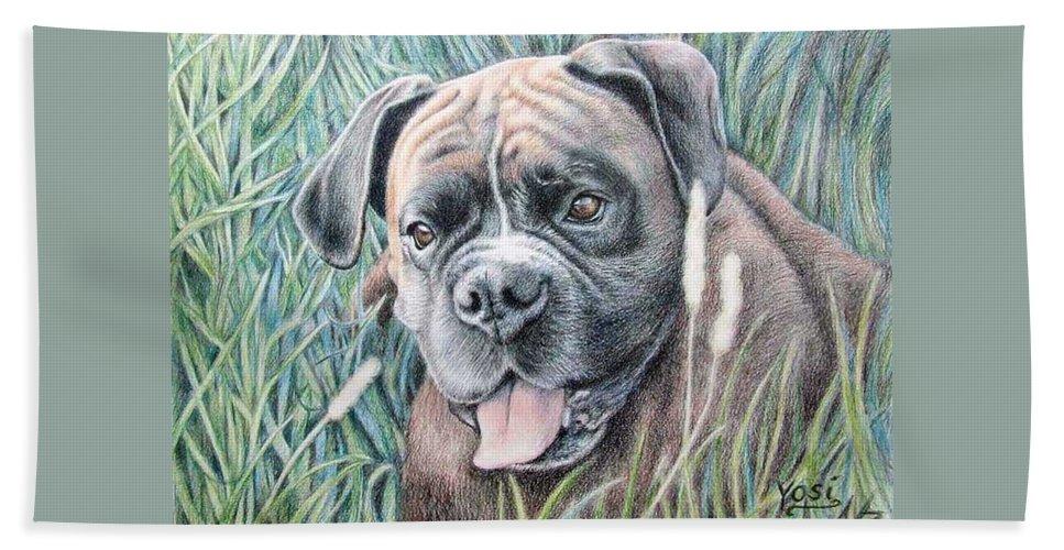 Dog Bath Towel featuring the drawing Boxer Yosi by Nicole Zeug