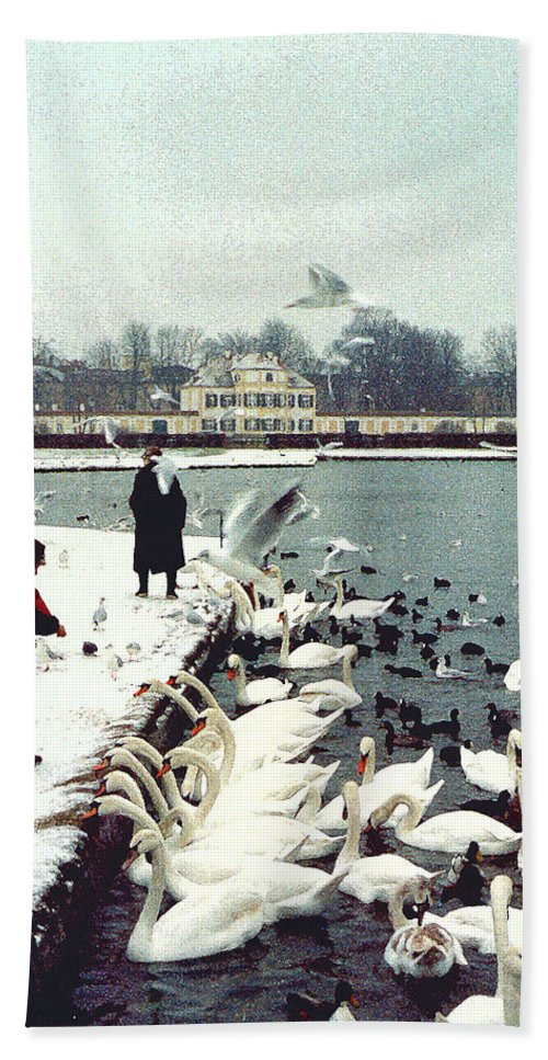 Swans Hand Towel featuring the photograph Boy Feeding Swans- Germany by Nancy Mueller