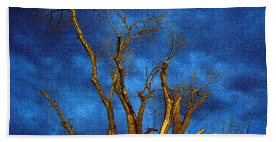 Blue Bath Sheet featuring the photograph Branches Against Night Sky H by Heather Kirk