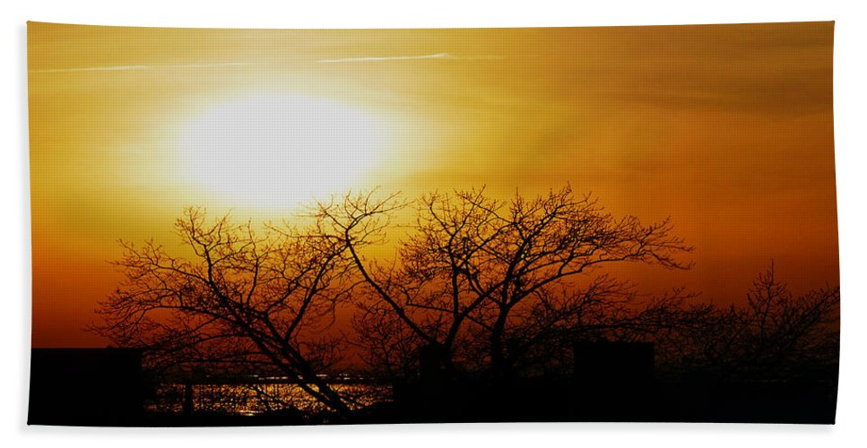 Landscape Bath Towel featuring the photograph Branches by Kendall Eutemey